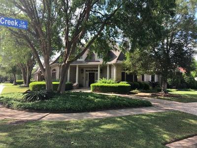 Sugar Land Single Family Home For Sale: 3103 Stephens Creek Lane