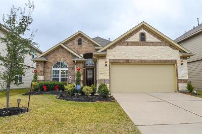 Katy Single Family Home For Sale: 25014 Clover Ranch Drive