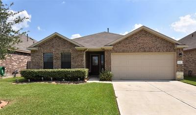 Tomball Single Family Home For Sale: 10107 Red Tamarack Lane