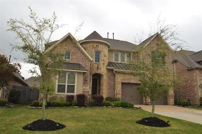Friendswood Single Family Home For Sale: 1505 Richland Hollow Lane
