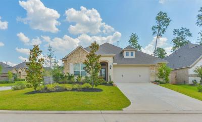 Conroe Single Family Home For Sale: 122 Trillium Park Loop