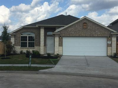 Katy Single Family Home For Sale: 3806 E Briarlilly Park Circle