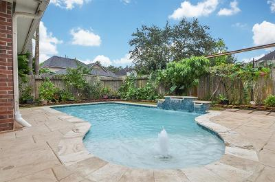 Sugar Land Single Family Home For Sale: 1414 Meadow Branch Drive