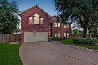 Katy Single Family Home For Sale: 3373 Zubin Lane