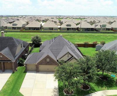 Richmond Single Family Home For Sale: 20223 Turtle Brook Lane