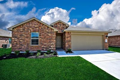 Rosenberg Single Family Home For Sale: 1803 Raven Vista