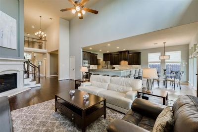 Houston Single Family Home For Sale: 1725 Du Barry Lane