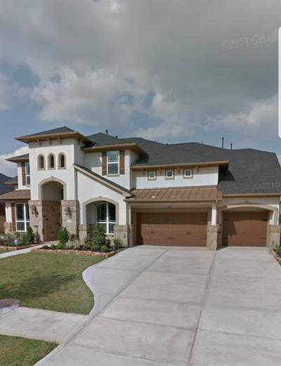 Sugar Land Single Family Home For Sale: 6119 Apple Bluff Ct Court