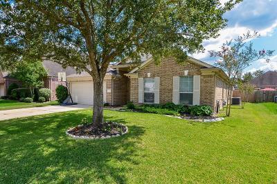 Houston Single Family Home For Sale: 18803 Keystone Oak Street