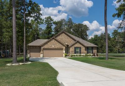 Conroe Single Family Home For Sale: 9110 Sierra Del Carmen