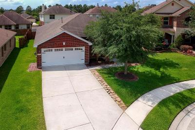 Cypress Single Family Home For Sale: 16219 Range Valley Lane
