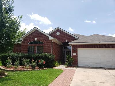 Tomball Single Family Home For Sale: 12163 Havenmist Drive
