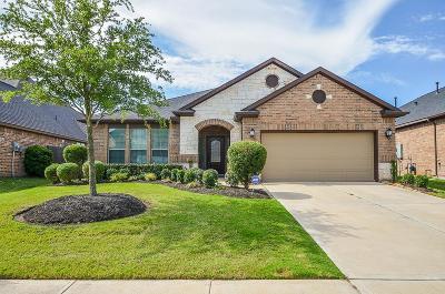 Riverstone Single Family Home For Sale: 4406 Millstone Canyon Lane