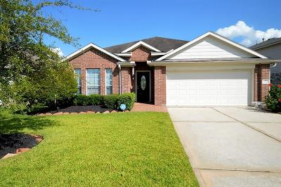 Tomball Single Family Home For Sale: 25018 Iberis Meadows Drive