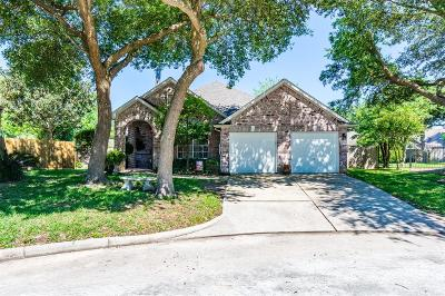 Humble Single Family Home For Sale: 19111 Kelly Oaks Court