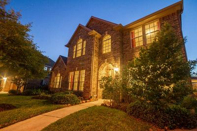Fort Bend County Single Family Home For Sale: 3502 Canyon Pass Drive