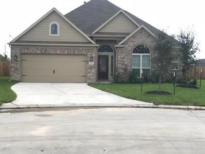 Spring Single Family Home For Sale: 2702 Summer Creek Drive