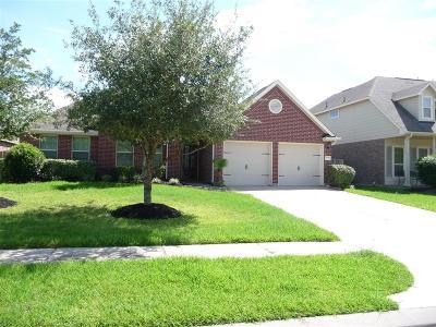 Houston Single Family Home For Sale: 4714 Autumn Pine Lane