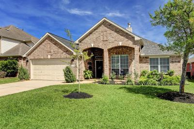 Tomball Single Family Home For Sale: 24230 Rocky Brook Falls