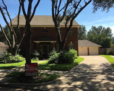 Sugar land Rental For Rent: 4807 Rebel Ridge Drive