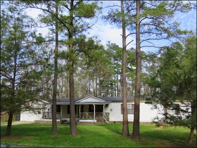 Magnolia Single Family Home For Sale: 33002 Bear Branch Lane