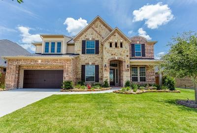 Single Family Home For Sale: 13910 Burnett Hills