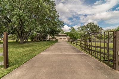 Pearland Single Family Home For Sale: 17125 County Road 127
