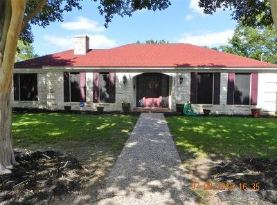 Hallettsville Single Family Home For Sale: 411 S Ridge Street