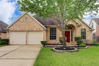 Houston Single Family Home For Sale: 11110 Cliffrose Court