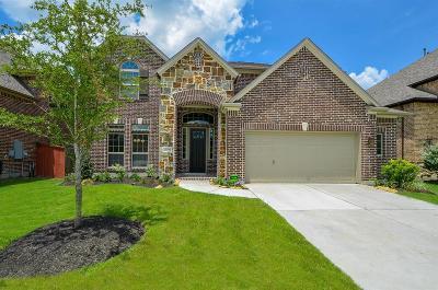 Porter Single Family Home For Sale: 25243 Birchwood Springs Avenue