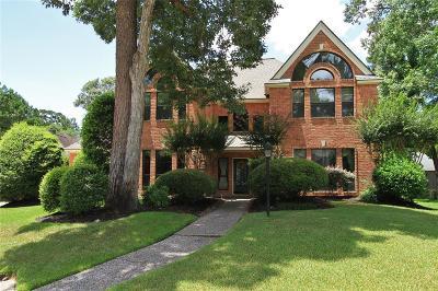Houston Single Family Home For Sale: 3107 Brook Grove Drive
