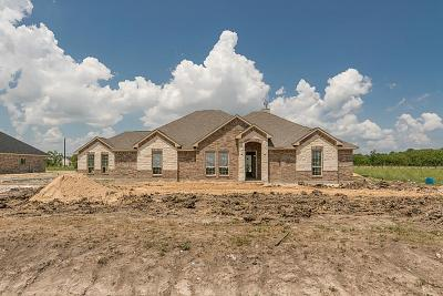 Baytown Single Family Home For Sale: 4611 Pineloch Bayou