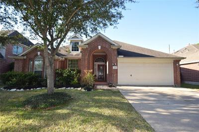 Houston Single Family Home For Sale: 16518 N Canyon Trace Drive