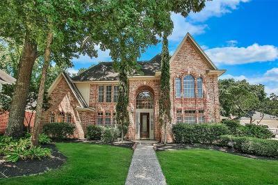 Houston Single Family Home For Sale: 2111 Grand Mesa Drive