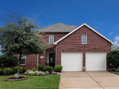 League City Single Family Home For Sale: 6152 Flint Court