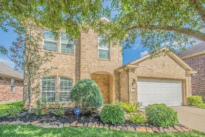 Shadow Creek Ranch Single Family Home For Sale: 2615 Golden Creek Lane