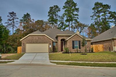 Conroe Single Family Home For Sale: 14124 Cleetwood Trail
