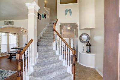 Tomball Single Family Home For Sale: 11910 Royal Isle Court