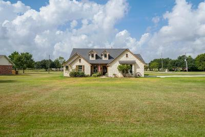 Sealy Single Family Home For Sale: 406 Briar Creek Lane