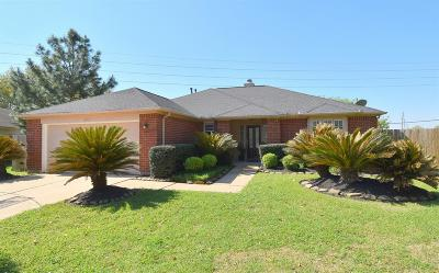 Katy Single Family Home For Sale: 6507 Larissa Circle