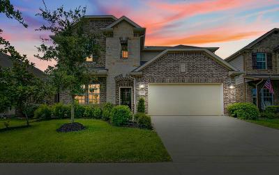 Sienna Plantation Single Family Home For Sale: 7014 Stevenson Drive