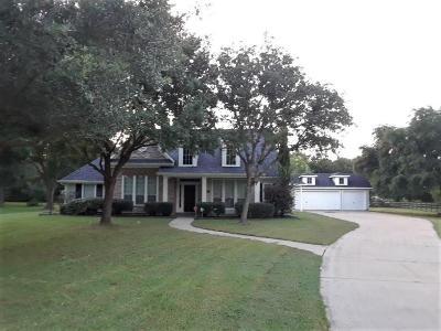 Fulshear Single Family Home For Sale: 31702 Tall Grass Lane