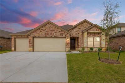 Manvel Single Family Home For Sale: 21 Alyssa Palms Drive