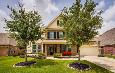 Dickinson Single Family Home For Sale: 1725 Coral Cliff Drive