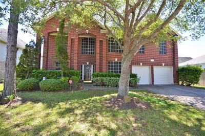 Pearland Single Family Home For Sale: 3703 W Pine Orchard Drive