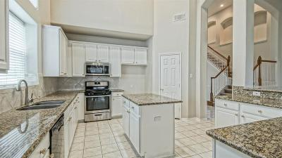 Katy Single Family Home For Sale: 1306 Ventura Canyon Drive