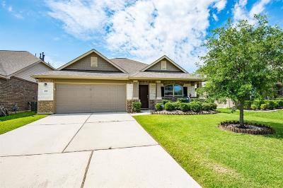Galveston County, Harris County Single Family Home For Sale: 4318 Iris Bay Lane