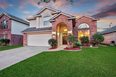 Tomball Single Family Home For Sale: 20102 Mammoth Falls Drive