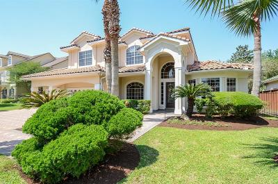Houston Single Family Home For Sale: 1502 Westshore Drive