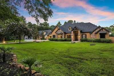 Magnolia Single Family Home For Sale: 17202 Gold Panning Court